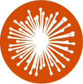 Symbolbild für Forschung